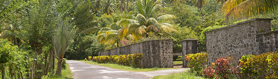 Valley Car Rental Dominica